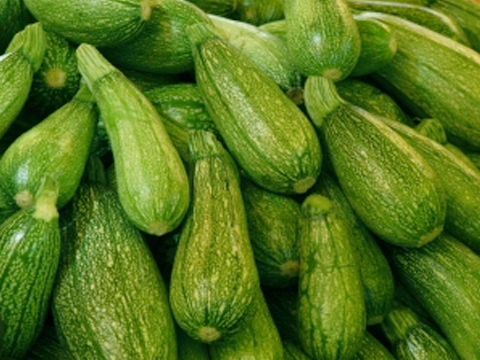 calabacita-alimento